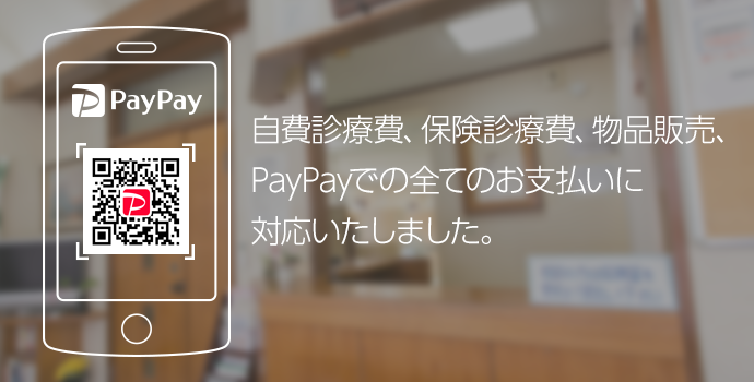 paypay02.png